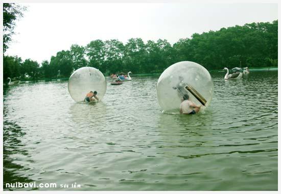 Bóng dưới nước