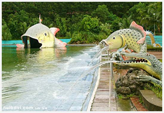 Cá chép phun nước